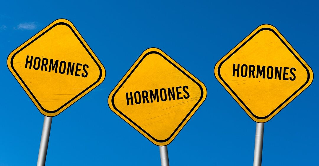 WHAT DO HORMONES DO?